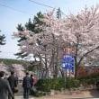 釜山でのひととき