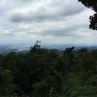 高尾山を登った