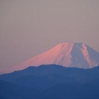 桜山展望台・・・