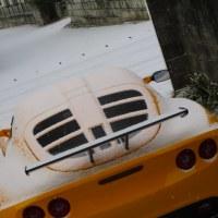今季2度目の積雪...