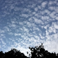 入道雲がでてきたが梅雨明けはまだかな