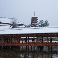 宮島の雪景色
