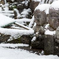 2017 雪を被りなおも500羅漢 (篠栗八十八か所40番札所一の滝寺) 《糟屋郡篠栗町》