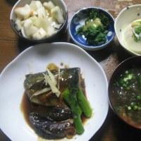 5/17 ばんごはん 鯖味噌煮