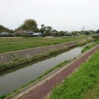 1年5カ月ぶりの釣行 茨城県道仙田 千葉県吉植池 江川