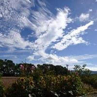 昨日 青い空の下で 地神祭。