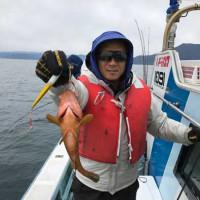 1/8(日):サワラ・サゴシ絶好調^^根魚もアコウにウッカリカサゴにソイにホウボウにヒラメもヽ(*^^*)ノ