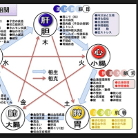 陰陽五行説と漢方医療