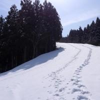 2015/03/25(土) あわす野、百間滑を偵察