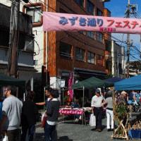 Mizuki Street fair in my town
