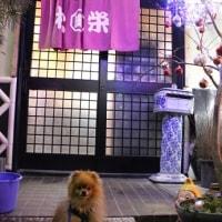 松栄寿司で可愛いお友達に会えたよ