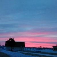 弥生の始まりは美しい朝だった
