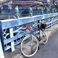腰痛は『分離すべり症』と診断されました。自転車で腰痛抑止効果を確認す!