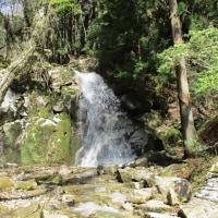 寿老の滝から屏風山・黒の田東湿地を周回