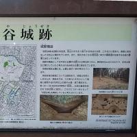 松陰神社と豪徳寺に初詣
