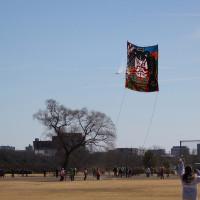 170219上州空っ風凧揚げ大会