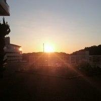 朝だー!!(*''▽'')!!