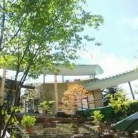 新緑の軽井沢で3日間のマルシェ