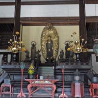 京都紅葉観光