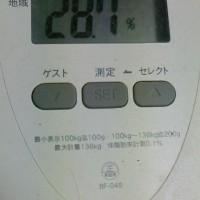 本日の体重測定