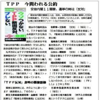 TPP 今問われる公約 安倍内閣11閣僚 選挙公約は「反対」