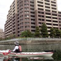 東京水路は新緑の季節に