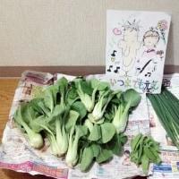 長男一家より野菜が送られてきました。