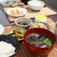 夕食 具だくさん冷やし中華&朝食 鮭ハラス焼き