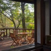 紅葉日和の蓼科、土日の天気も期待できそうだ。