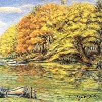 157.昭和55年の新田川風景