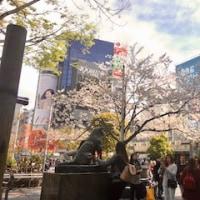 外国人観光客と今のところ安全な日本
