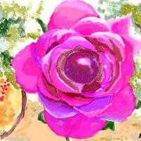 パソコンで描く水彩画 「アンジェの薔薇」