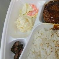 三木市緑が丘  ほっかほっか亭さん  ハンバーグ弁当  ご飯少盛