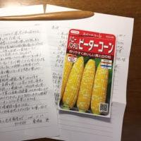 桑波田さんからスイートコーンの種要請!!