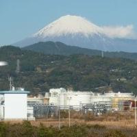 満足、満腹!山は富士山、鯛より鮪で迎えた新しい年