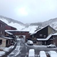 今日の一枚【today's shot】 雪景色(snowscape)
