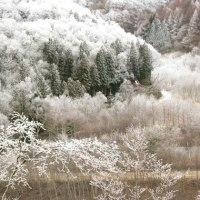 霧氷の旅②