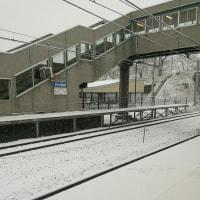 雪⛄なのに