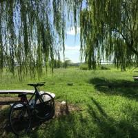 障がい者向け自転車