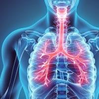 肺の造血機能