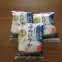 賞品の無洗米