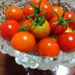 トマト豊作、キュウリが行方不明の巻