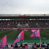 セレッソ大阪1-0鳥栖@キンチョウスタジアム