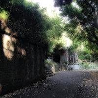 観音崎公園砲台跡