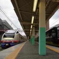 2016年も、快速「谷川岳紅葉号」に乗る(上越485系)