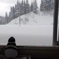 「この雪どう?」って生徒に聞いてみた。