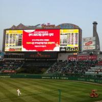 韓国で野球観戦