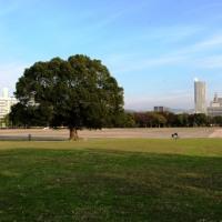 広島中央公園はどう変わるのか!?