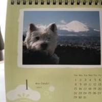 うーちゃんカレンダー1月