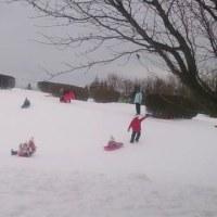 冬のウォーキングコース